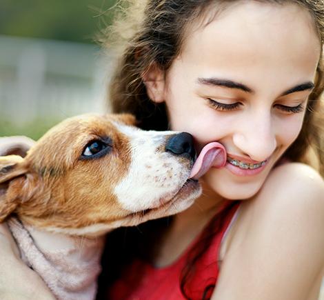 beagle-kissing-girl