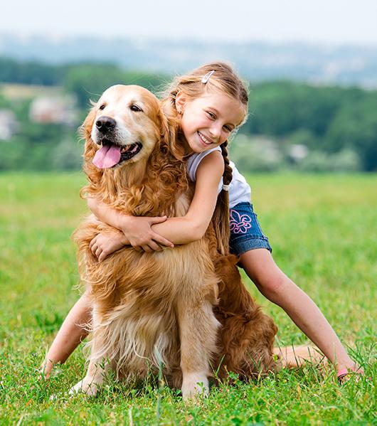 girl hugging golden in field in summer