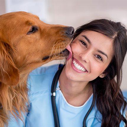 Perro lamiendo la cara de veterinario: Hospital Animal en Austin